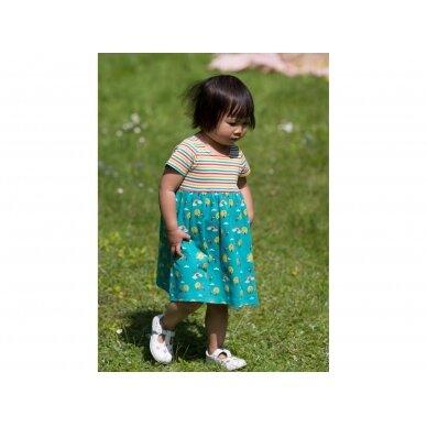 """Little Green Radicals suknelė ,,Vaivorykštė"""" 3"""