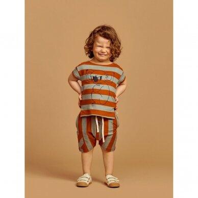 """Mainio šortai ,,Stripes"""" 2"""
