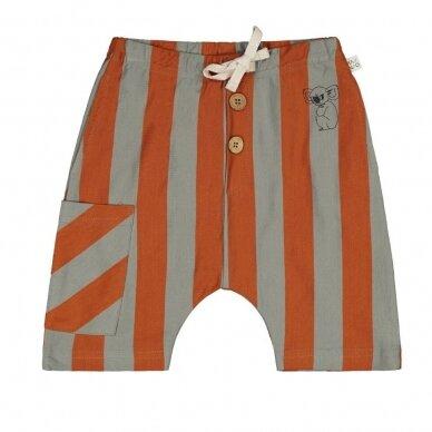 """Mainio šortai ,,Stripes"""""""