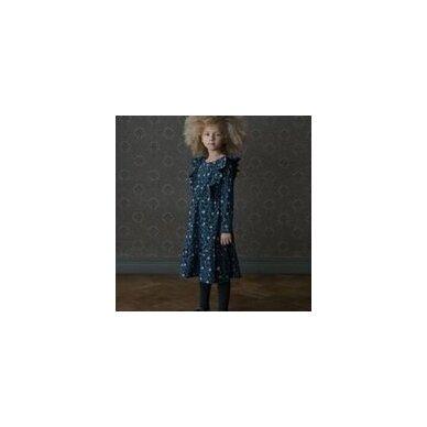Mainio suknelė ,,Moonlight Meadow frill dress 2