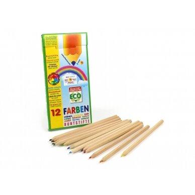ökoNORM spalvoti pieštukai (12 spalvų) 2