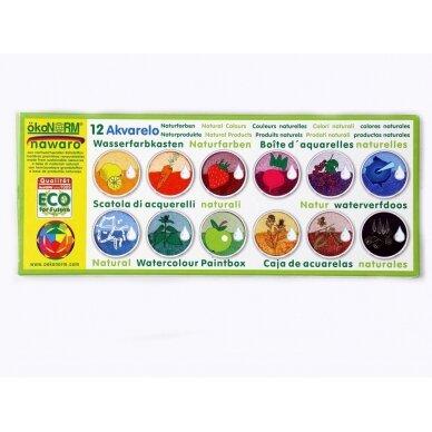 ökoNORM vandeniniai dažai metalinėje dėžutėje (12 spalvų) 2