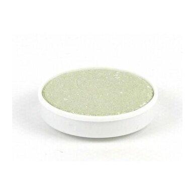 ökoNORM vandeninių dažų papildymo tabletė - šviesiai žalia