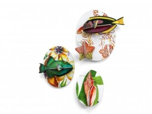 "Studio ROOF sienos dekoracija ,,Collectors box fishes - vol1"""