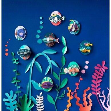 """Studio ROOF dekoracija ,,Butterfly fish"""" 3"""