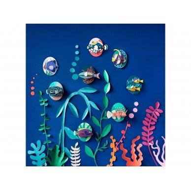 "Studio ROOF sienos dekoracija ,,Clown triggerfish"" 2"