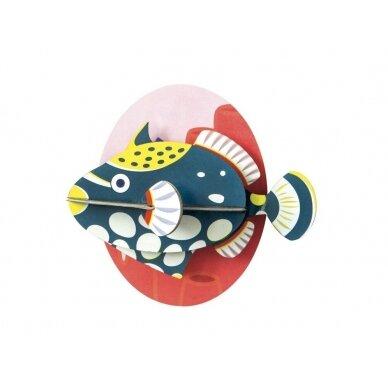 "Studio ROOF sienos dekoracija ,,Clown triggerfish"""